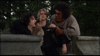 princess bride two heroes Start studying princess bride hero's journey learn vocabulary, terms, and more with flashcards, games, and other study tools.